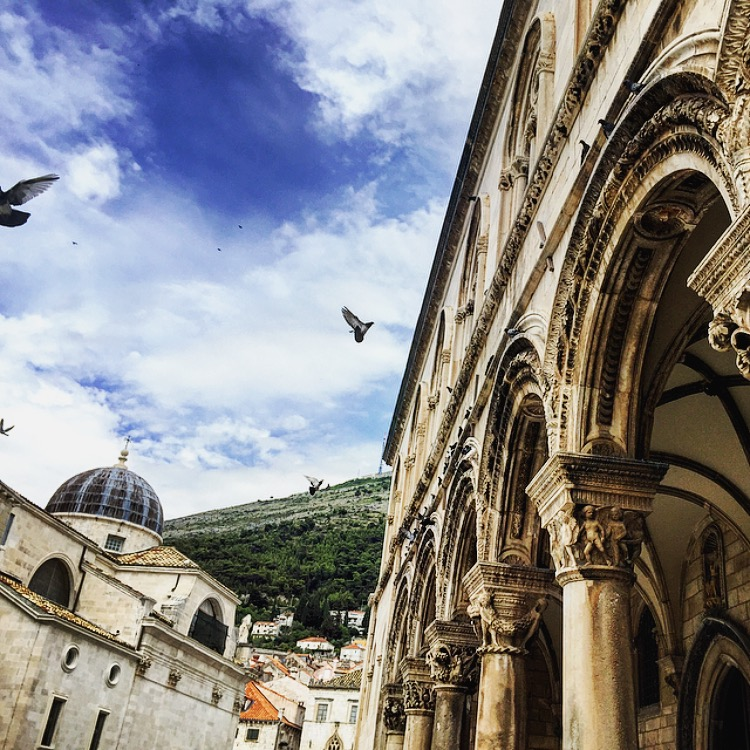Beautiful birds flying high in the ancient streets of Croatia