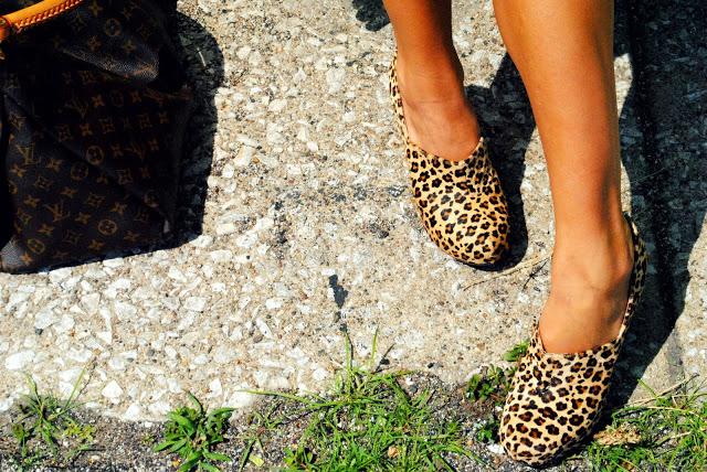 cheetah shoes by sam edelman
