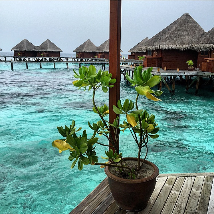 water-villas-mirihi-maldives