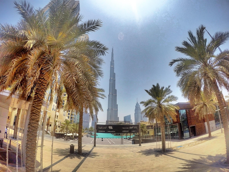 burj-khalifa-palm-trees-dubai