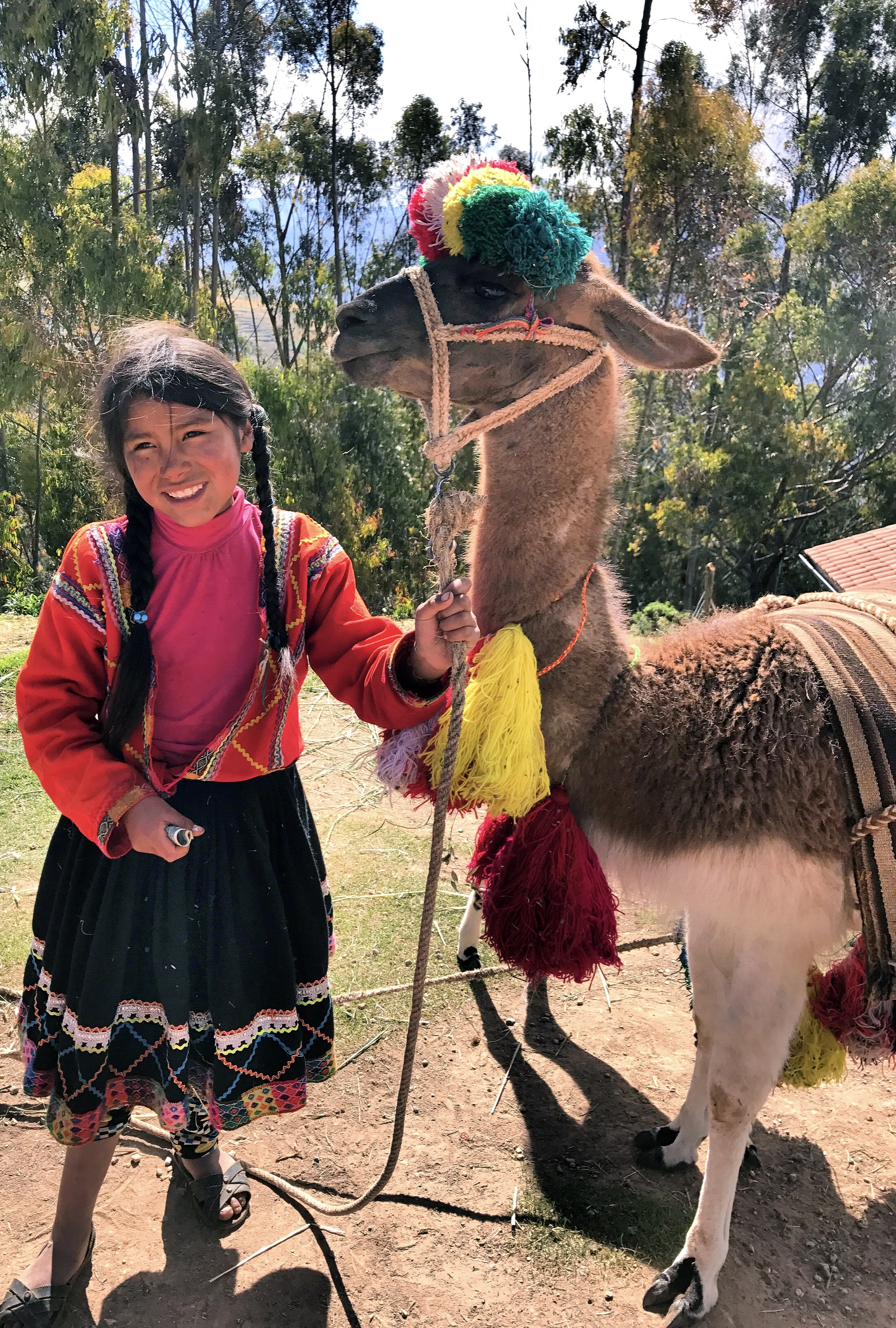 machu-picchu-beautiful-peruvian-girl-authentic-costume-traditional-colorful-llamas